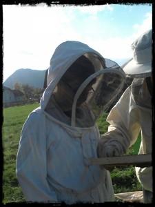 Gio bei der Erstbegegnung mit den Bienen