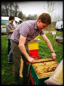 ran an die Bienen ;0)